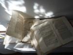 web-15-September-2013-Books-in-Autmn-light-copy