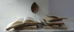 web-18-November-2019-10.36am-G.David-books-with-Mark-Handleys-leaf-.-copy